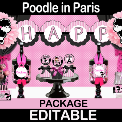poodle in paris birthday party package supplies