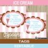printable ice cream pink favor tags