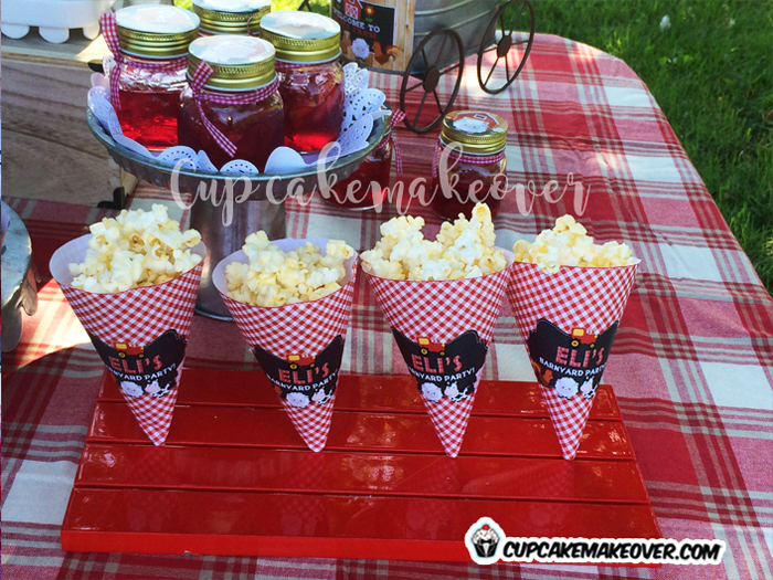 farm barnyard custom favors corn cones popcorn
