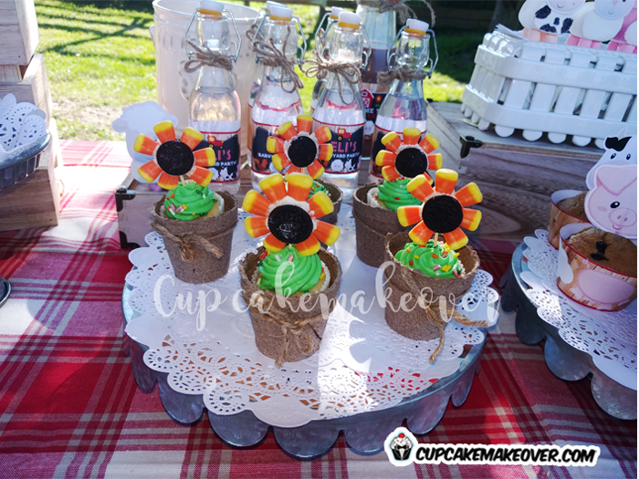 barnyard party ideas edible sunflowers candy